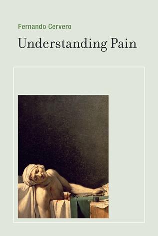 Cervero understanding pain